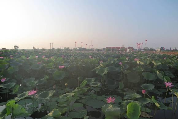 2018江西新建启动乡村振兴生态文明文化旅游周